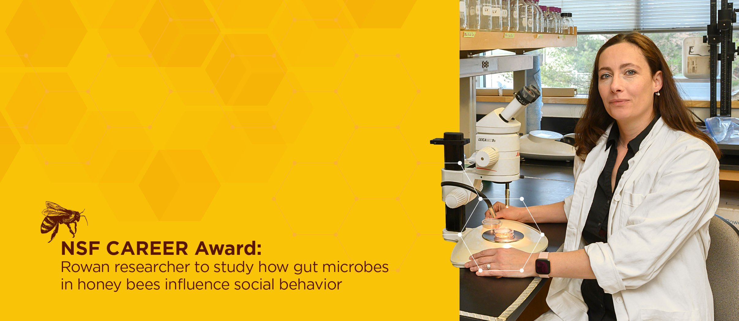 NSF CAREER Award: Rowan researcher, Dr. Svjetlana Vojvodic, to study gut microbes of honey bees